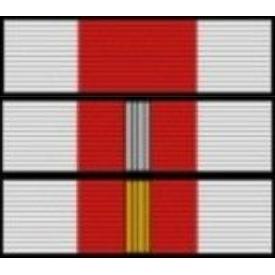 Baretka Medal Za Zasługi dla Pożarnictwa